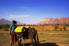 Girl with jerry cans and donkey in Tigray Ethiopia